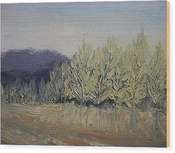 Cades Cove Wood Print by Dwayne Gresham