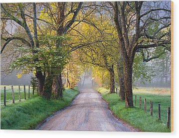 Cades Cove Great Smoky Mountains National Park - Sparks Lane Wood Print