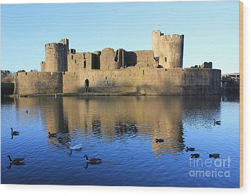 Wood Print featuring the photograph Caerphilly Castle by Vicki Spindler