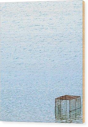 Caged Expanse Wood Print by Kaleidoscopik Photography