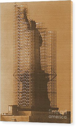 New York Lady Liberty Statue Of Liberty Caged Freedom Wood Print
