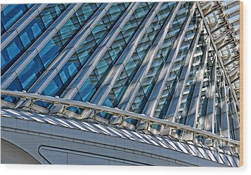Calatrava In The Morning Wood Print by Mary Machare