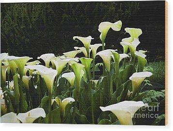 Cali Lily Wood Print