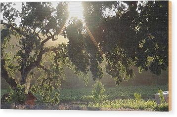 Wood Print featuring the photograph Cali Lite by Shawn Marlow