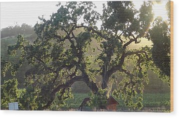 Wood Print featuring the photograph Cali Setting by Shawn Marlow