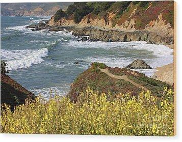 California Coast Overlook Wood Print by Carol Groenen