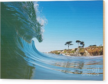 Wood Print featuring the photograph California Curl by Paul Topp