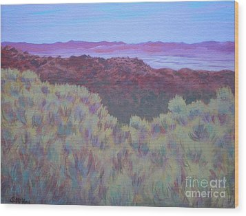 California Dry River Bed Wood Print by Suzanne McKay