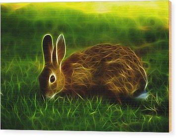 California Hare - 0291 Wood Print by James Ahn