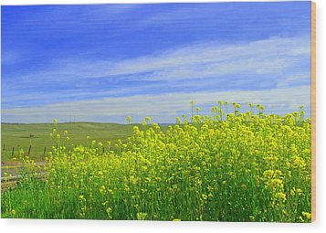 California In Spring Wood Print by Rima Biswas
