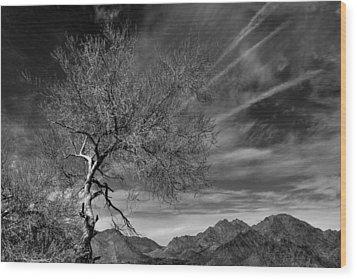 California Landscape 1 Wood Print by Jim Vance