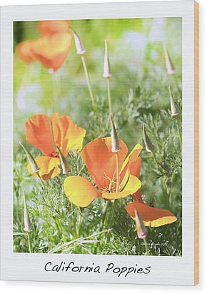 California Poppies Wood Print by Artist and Photographer Laura Wrede