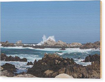 California See Harbor  Wood Print by Elena Wells