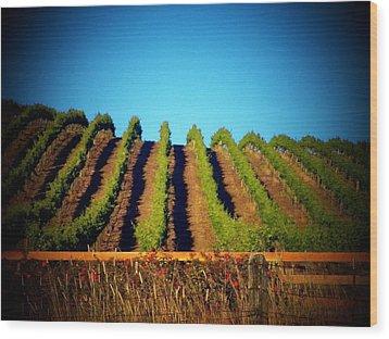 California Vineyard Wood Print by Joyce Kimble Smith