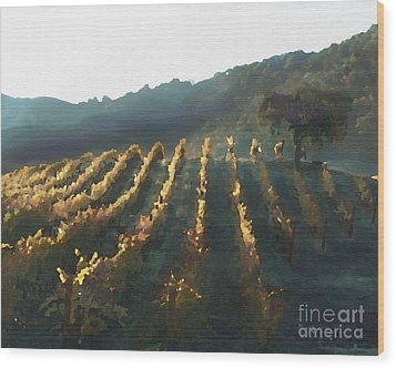 California Vineyard Series Wine Country Wood Print by Artist and Photographer Laura Wrede