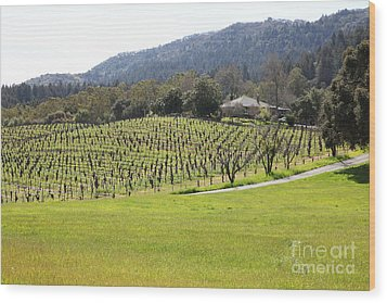 California Vineyards In Late Winter Just Before The Bloom 5d22073 Wood Print by Wingsdomain Art and Photography
