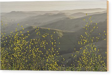 Wood Print featuring the photograph California Wildflowers by Steven Sparks