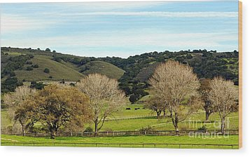 California Winter Landscape Wood Print by Susan Wiedmann