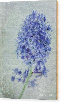 Californian Blue Wood Print by John Edwards