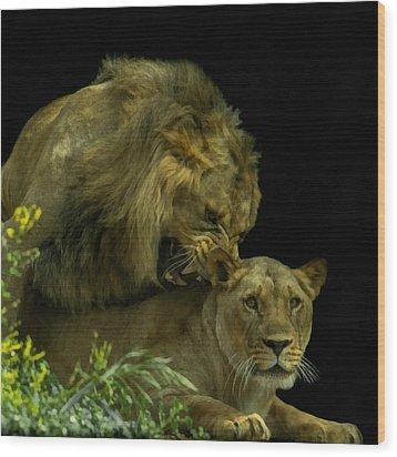 Call Of The Wild 2 Wood Print by Ernie Echols