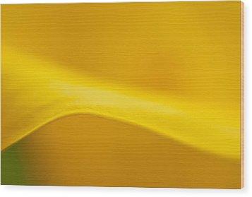 Calla Curve Wood Print