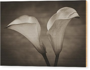 Wood Print featuring the photograph Calla Lilies In Sepia by Sebastian Musial