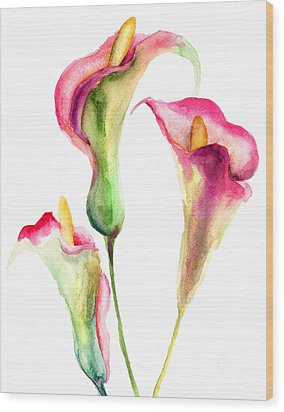 Calla Lily Flowers Wood Print