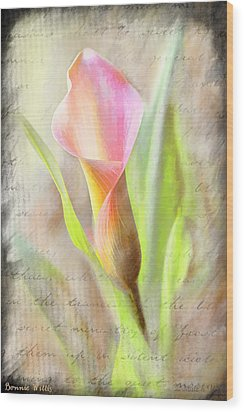 Calla Lily In Pink Wood Print by Bonnie Willis