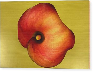 Wood Print featuring the photograph Calla Lily by Patricia Januszkiewicz