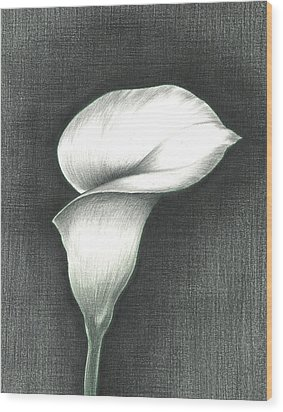 Calla Lily Wood Print by Troy Levesque