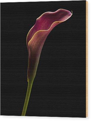 Calla Profile Wood Print by Jean Noren