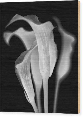 Callas Wood Print by Jaromir Hron