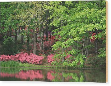 Wood Print featuring the photograph Callaway Gardens 1 by Mountains to the Sea Photo