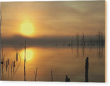 Calm At Dawn Wood Print by Roger Becker