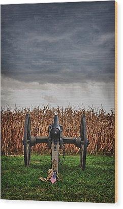 Calm Before The Storm 4 Wood Print by Rhonda Negard