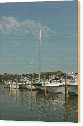 Wood Print featuring the photograph Calm Day At The Marina by Dorothy Maier