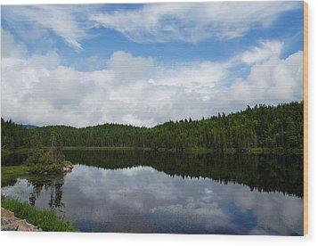 Calm Lake - Turbulent Sky Wood Print by Georgia Mizuleva