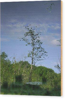 Calm Reflecting Moment Wood Print