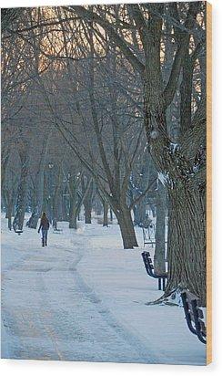Calming Brisk Wood Print by Cyryn Fyrcyd