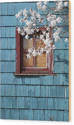 Wood Print featuring the photograph Calming by Kjirsten Collier
