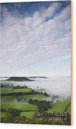 Cam Long Down Wood Print by Anne Gilbert