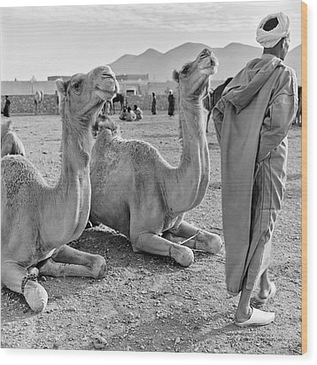 Camel Market, Morocco, 1972 - Travel Photography By David Perry Lawrence Wood Print