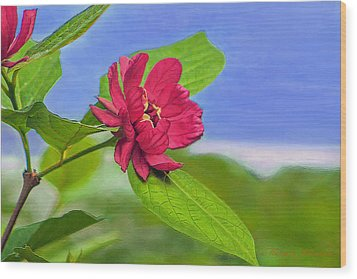 Wood Print featuring the digital art Camellia by Marion Johnson