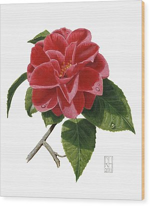 Camellia Wood Print by Richard Harpum