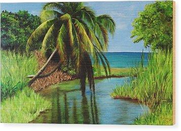 Camino Del Agua Wood Print by Migdalia Bahamundi