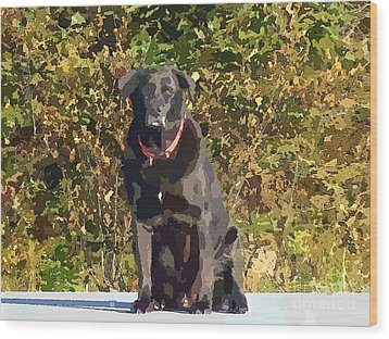Camouflage Labrador - Black Dog - Retriever Wood Print by Barbara Griffin