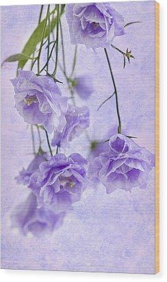 Campanella Blossoms Suspended - Macro Wood Print