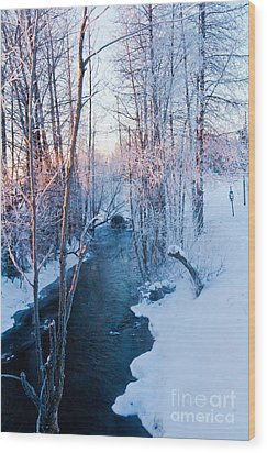 Campbell Creek In Hoarfrost Wood Print