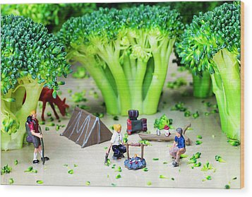 Camping Among Broccoli Jungles Miniature Art Wood Print by Paul Ge