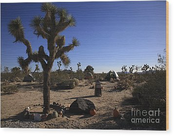 Camping In The Desert Wood Print by Nina Prommer